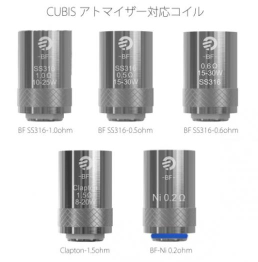 BF SS316-0.5ohm head 5pcs